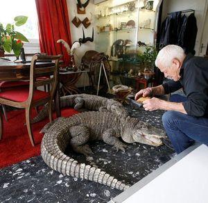 Người đàn ông nuôi 400 con bò sát trong nhà làm thú cưng