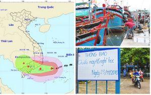 Khu vực dự kiến chịu ảnh hưởng nhất của bão số 9, gió giật cấp 13