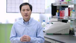 Trung Quốc đình chỉ hoạt động chỉnh sửa gen của thai nhi