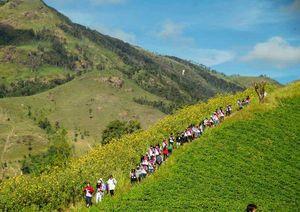 Vùng núi lửa Chư Đăng Ya hút khách