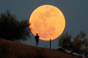Hiện tượng 'Siêu Trăng' đúng Rằm tháng Giêng: Mặt trăng đạt cực đại lúc 22h53' đêm nay