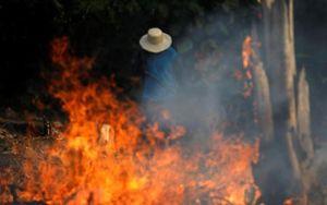 Ảnh gây giật mình về mức độ cháy rừng Amazon