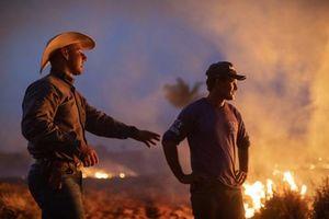 Brazil từ chối 22 triệu USD tiền viện trợ chữa cháy rừng Amazon từ G7