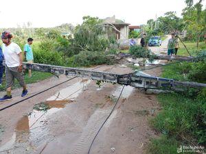 Nghệ An: Điện chập cháy, hàng chục ha lúa và rau màu đổ rạp do ảnh hưởng bão số 4