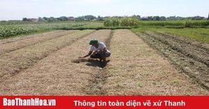 Đảng bộ xã Thiệu Minh lãnh đạo nâng cao chất lượng các tiêu chí nông thôn mới