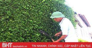 Cụ ông Hà Tĩnh bật mí việc gìn giữ hàng rào xanh độc đáo gần 200 năm tuổi