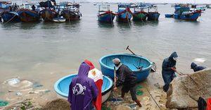 Cưỡng chế hơn 1.200 người ở vùng dự kiến tâm bão vào bờ