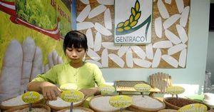Hồng Kông kết nối giao thương mặt hàng gạo của Việt Nam