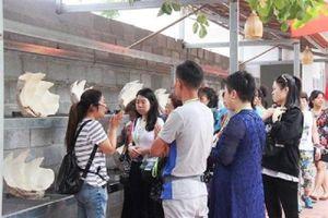 Khánh Hòa: Chuyển hồ sơ làm giả thẻ HDV du lịch đến cơ quan điều tra