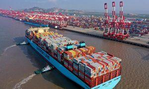 Vận tải biển quốc tế 'điêu đứng' vì virus Corona