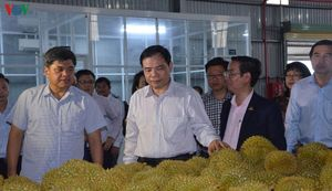 Tiền Giang sẽ hỗ trợ tiền điện, thuê mướn kho bãi tiêu thụ nông sản