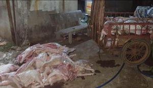 Đồng Nai: Bắt quả tang đại lý giết mổ heo bệnh, heo chết bán cho công nhân
