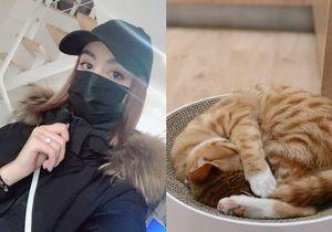 Cô gái ở lại tâm dịch Vũ Hán vì không muốn bỏ lại mèo cưng