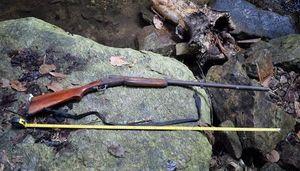 Đi săn thú rừng, người đàn ông trúng đạn tử vong