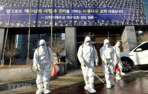 Chính phủ Hàn Quốc xem xét yêu cầu Tân Thiên Địa bồi thường thiệt hại