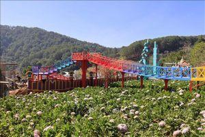 Làm rõ thông tin liên quan đến Vườn thượng uyển bay tại Đà Lạt