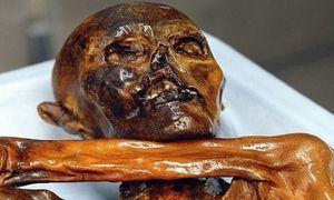 Vì sao xác ướp Otzi bị đồn mang lời nguyền đoạt mạng 7 người?