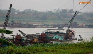 Cận cảnh hàng nghìn m2 đất sạt lở do doanh nghiệp 'tận hủy' tài nguyên cát trên sông Lô