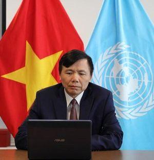 Hội đồng Bảo an Liên hợp quốc họp trực tuyến thảo luận tình hình Libya