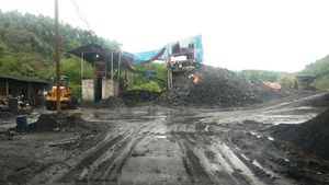 Cần làm rõ nguồn than của các xưởng chế biến ở Phấn Mễ