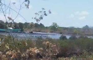 Cà Mau: Dân bức xúc vì đầm tôm công nghiệp của cán bộ xả thải gây ô nhiễm