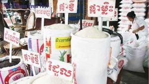 Campuchia hạn chế xuất khẩu gạo