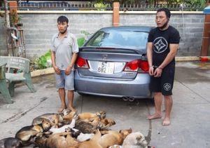 Bình Dương: Sử dụng ô tô đi trộm chó cũng không thoát