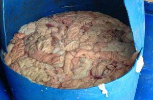 Phát hiện hơn 72 tấn lòng lợn bốc mùi hôi thối ở Hải Dương
