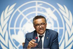 Tổng giám đốc WHO bị dọa giết, xúc phạm sắc tộc