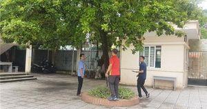 Hà Nội: Yêu cầu xử lí cây xanh bị nghiêng, mối mọt trong khuôn viên trường học