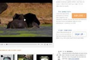 Những website chia sẻ video hàng đầu