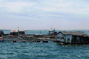 Yêu cầu báo cáo khẩn về việc người Trung Quốc 'đóng bè' trên vịnh Cam Ranh