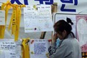 Vụ chìm phà Sewol: Học sinh vô tư đùa giỡn mà không biết thảm họa đang tới
