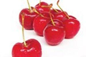 Cherry, giải pháp cho người giảm cân