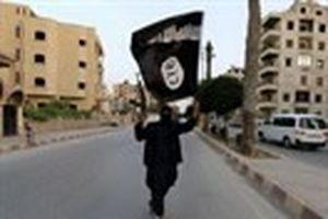 Nhà nước Hồi giáo (IS) muốn gì khi hành quyết phóng viên Mỹ?