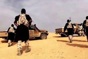 Nguy cơ mạng lưới khủng bố al-Qaeda trỗi dậy ở Syria