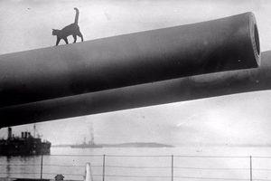 Khốc liệt kinh hoàng những trận hải chiến trong CTTG 1 (1)