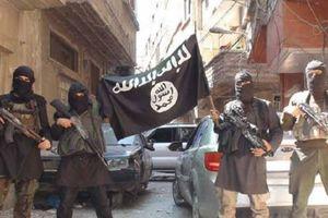 IS sắp tháo lui khỏi cứ địa tại ngoại vi Damascus
