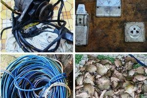 Đồn BP Cần Thạnh bắt giữ đối tượng dùng kích điện khai thác thủy sản