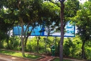 Tỉnh Bà Rịa - Vũng Tàu kiên quyết thu hồi các dự án chậm triển khai