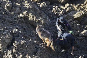 Chó nghiệp vụ, máy dò nhiệt tìm 10 nạn nhân bị đất đá vùi lấp