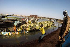 Khám phá cuộc sống thú vị ít thấy bên dòng sông Niger