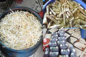 Những thực phẩm Việt thường được ủ hóa chất lạ của Trung Quốc bán 'nhập nhèm' ở các chợ