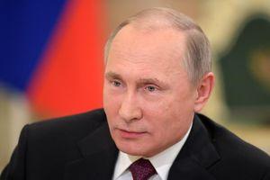 Tổng thống Putin ủng hộ vùng tự do thương mại châu Á - Thái Bình Dương
