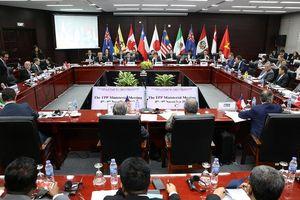11 nước đồng thuận với tên gọi mới 'CPTPP'