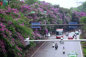 Cấm ô tô đi đường Kim Mã trong thời gian thi công tuyến Metro Nhổn-ga Hà Nội?