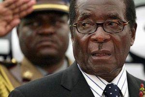Từng là ngôi sao châu Phi, Zimbabwe tuột dốc không phanh ra sao?
