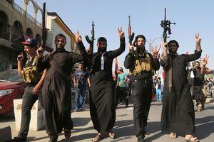 IS đã mất bao nhiêu % lãnh thổ kiểm soát tại Iraq và Syria?