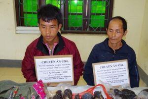 Bắt 2 đối tượng vận chuyển 4kg ma túy từ Lào về Việt Nam tiêu thụ