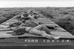 Rùng mình chuyến tàu 'tử thần' đến Mỹ của dân nhập cư